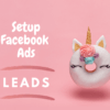 setup facebook ads - leads